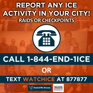 call the hotline to report ICE activity